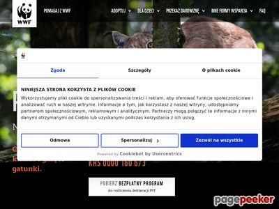 WWF- darmowy program PIT