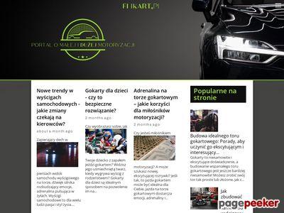 Gokarty Kraków Gromadzka 66 Elikart M