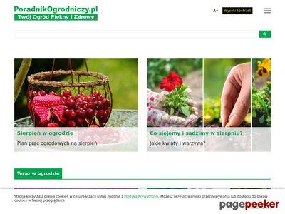Blog Ogrody