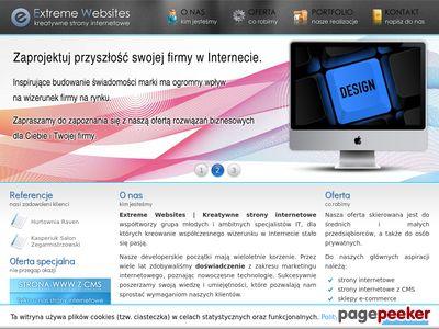 ExtremeWebsites.PL | Kreatywne strony internetowe