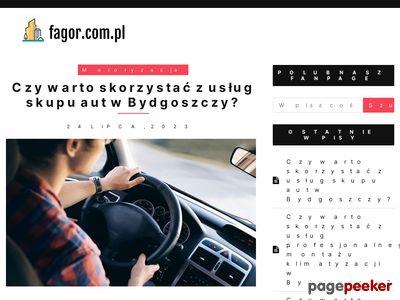 Fagor.com.pl - Pozycjonowanie