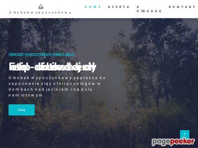 Forest - noclegi Lublin