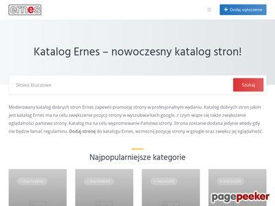 Katalog Ernes - zwiększ oglądalność strony
