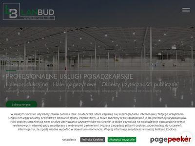 Łan Łanecki - wylewki maszynowe