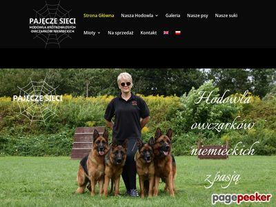 Hodowla Owczarków Niemieckich, Pajęcze sieci FCI, Kraków