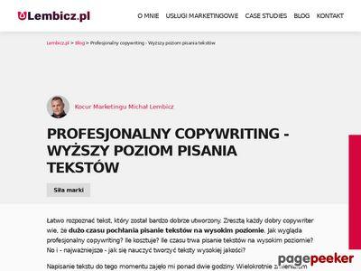 Profesjonalny Copywriter - opisy, teksty, artykuły