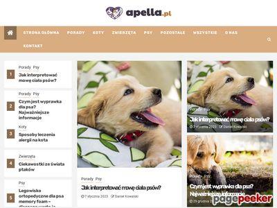Apella.pl | Katalog stron