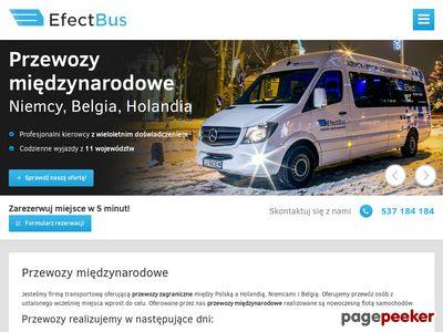 EfectBus - Bus z Polski do Dani