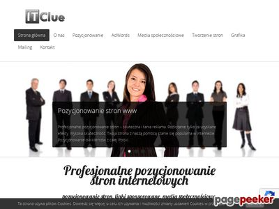 Marketing internetowy IT Clue