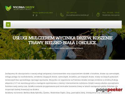 Wycinka drzew i karczowanie Bielsko-Biała