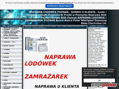Naprawa Lodówek i Zamrażarek- Serwis Poznań