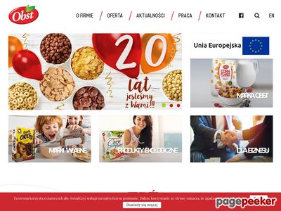 Płatki corn flakes - Obst.pl