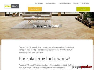 Praca Krakow