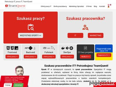Praca IT - TeamQuest