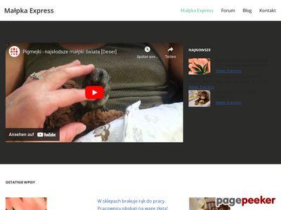 Małpka Express - ogólnopolska sieć sklepów spożywczych