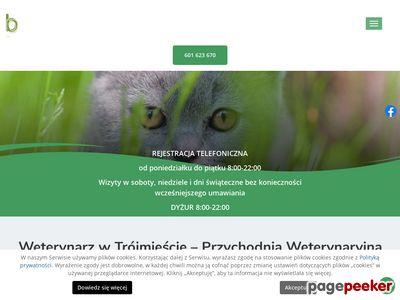 J. Borcowski, T. Popławski - badanie USG zwierząt, Trójmiasto