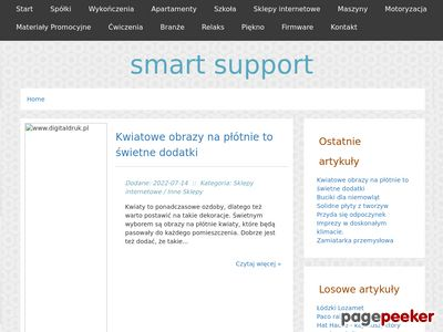 Smart Support - serwis komputerowy Łódź