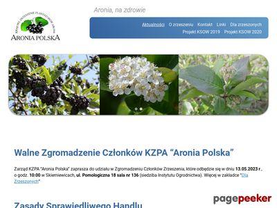 Aronia czarnoowocowa - Uprawa owoców aronii