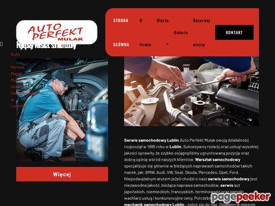 Auto-Perfekt - diagnostyka samochodu Lublin