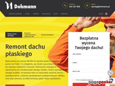 Dohmann.pl - Dachy przemysłowe