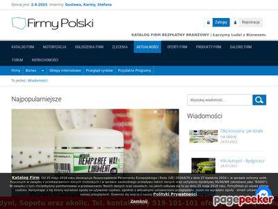 Polskie serwisy reklamowe
