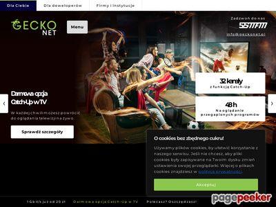 Oferta i dane firmy Geckonet