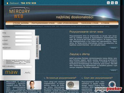 Strona www firmy MercuryWeb