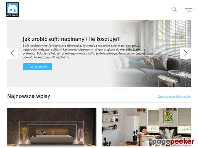 Strona www firmy MOLEO.pl