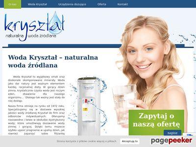 Strona www firmy KANIG