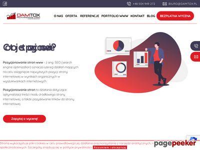 Strona www firmy Damtox