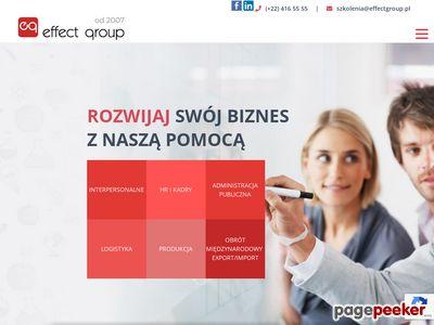 Strona www firmy Effect Group