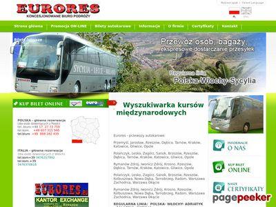 Strona internetowa firmy Eurores