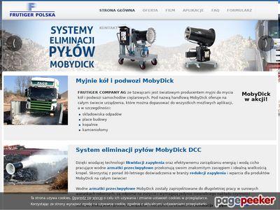 Strona internetowa firmy FRUTIGER Polska