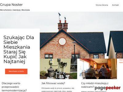 Strona www firmy Noster Nieruchomości