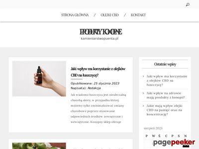 Strona www firmy Puenta