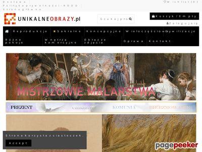 Strona www firmy UnikalneObrazy.pl