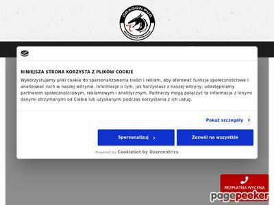 www.dragonpur.pl