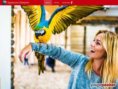 Papugarnia atrakcje Zakopane