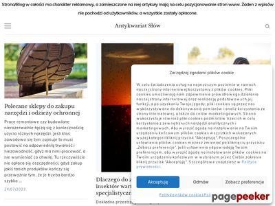 Antykwariat-szczecin.com.pl - tylko cenne antyki.
