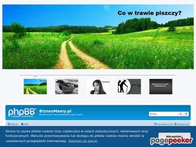 Www.biznesmamy.pl