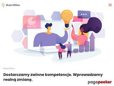 Szkolenia scrum - brasswillow.pl