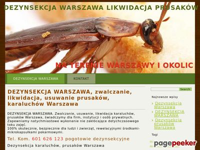 Dezynsekcja Warszawa zwalczanie karaluchów