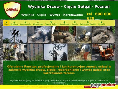 Wycinka Drzew w Poznaniu oraz wywóz gałezi - Rębak