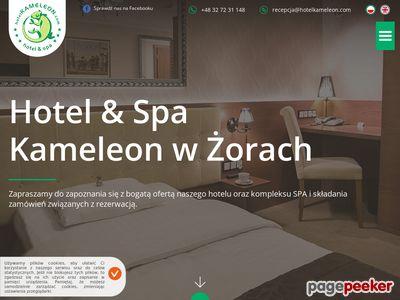 Hotel Kameleon - noclegi Zory