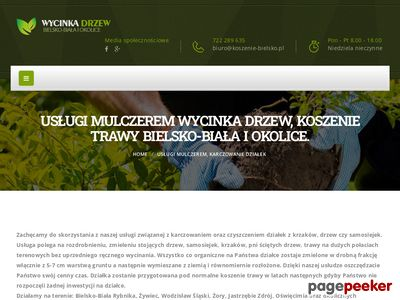 Wycinka drzew, rębak Bielsko-Biała
