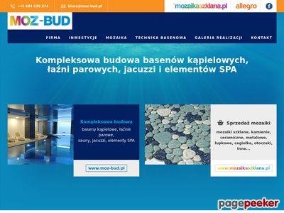 Moz-Bud.pl | budowa basenów | mozaika szklana |