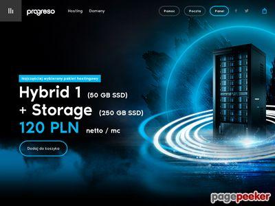Profesjonalny hosting, tanie domeny