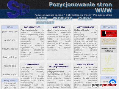 Pozycjonowanie stron WWW - Rafał Hornik