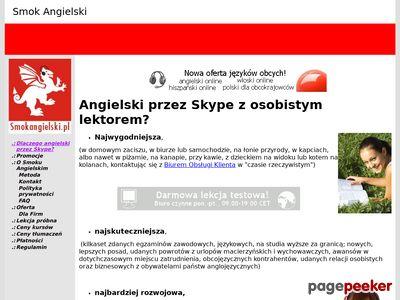 Angielski przez Internet - Doradztwo językowe