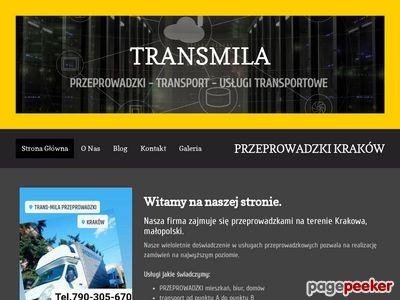 Trans-Mila najtańsze przzeprowadzki transport Kraków Europa